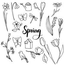 Vector Spring Doodle Set