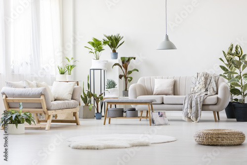 Spacious floral living room - Buy this stock photo and explore ...
