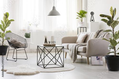 Modern living room with ficus – kaufen Sie dieses Foto und finden ...