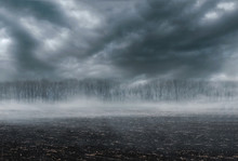 Gloomy Landscape - Scorched Ea...