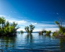Folsom Lake Reservoir