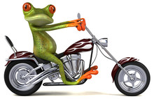 Fun Frog On A Motorcycle - 3D ...