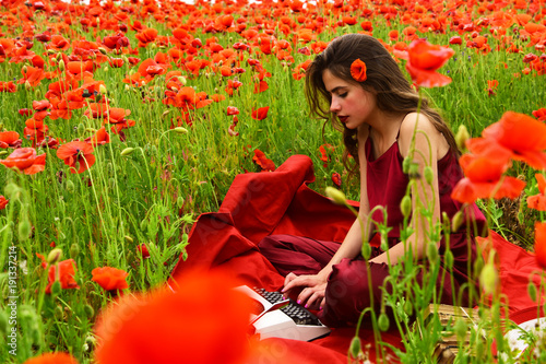 Poppy, Remembrance or Anzac Day.
