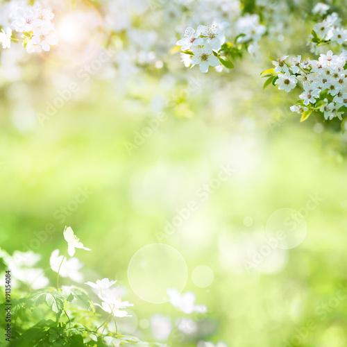Staande foto Lente Spring landscape with cherry blossoms