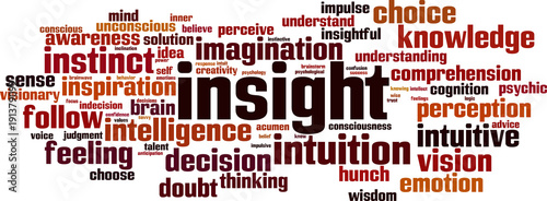 Insight word cloud Wallpaper Mural