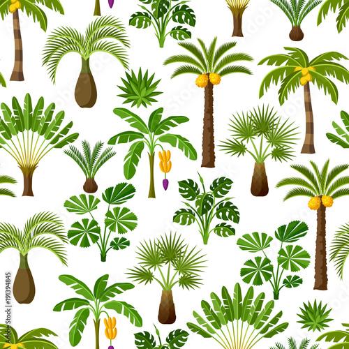 bezszwowy-wzor-z-tropikalnymi-drzewkami-palmowymi-egzotyczne-rosliny-tropikalne-ilustracja-natury-dzungli