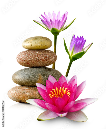 Printed kitchen splashbacks Lotus flower image of lotus flower and stones