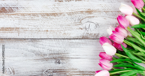 springtime pink tulips on white weathered wooden boards