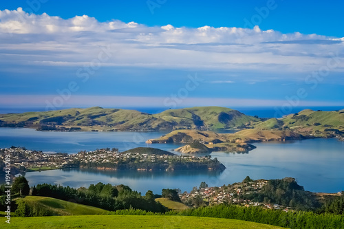Dunedin town and bay as seen from the hills above Wallpaper Mural