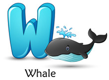 Letter W Is For Whale Cartoon ...