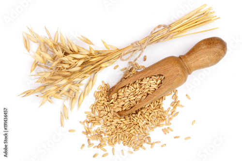 oat spike with grains in wooden scoop isolated on white background Canvas Print
