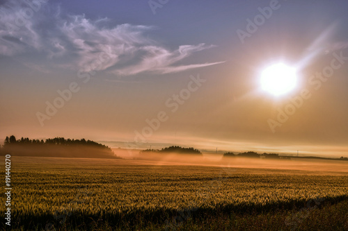 Beautiful Sunrise during a foggy morning at the field Wallpaper Mural