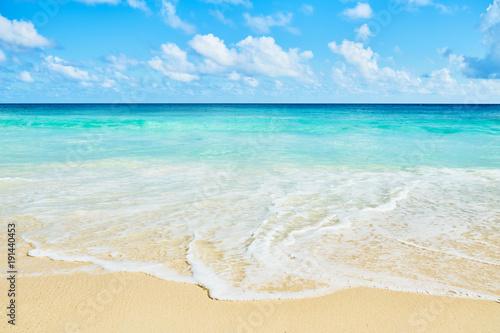 Staande foto Caraïben Clear aqua blue sea water and white sand tropical beach