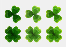 Set Of Green Leaves Of Clover....