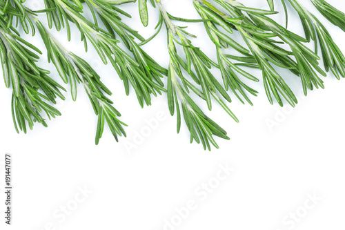 Poster Vegetal Fresh green rosemary isolated on a white background with copy space for your text. Top view. Flat lay