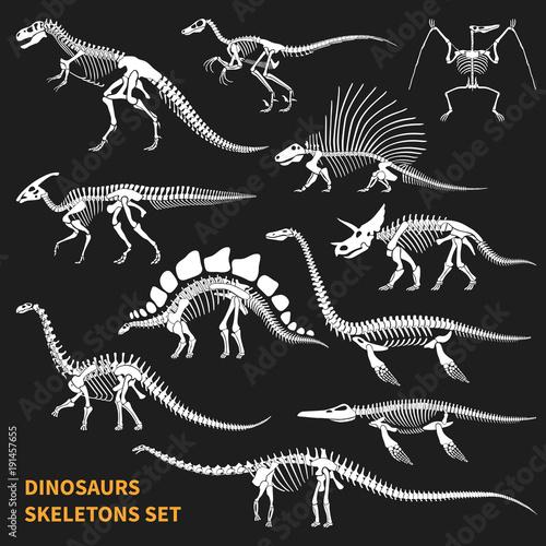 Fotografering  Dinosaurs Skeletons Chalkboard Icons Set