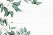 Leinwanddruck Bild - Eucalyptus leaves on white background. Frame made of eucalyptus branches. Flat lay, top view, copy space