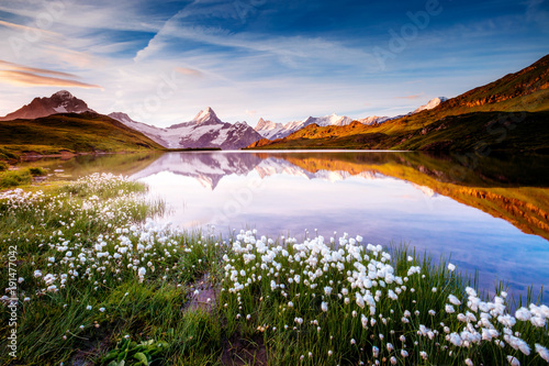 great-view-of-bernese-range-above-bachalpsee-lake-location-swiss-alps-grindelwald-valley