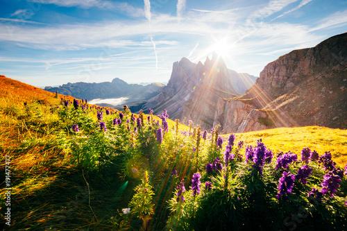 Fotografia  Calm view of the alpine hill
