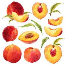 Watercolor Peach Set