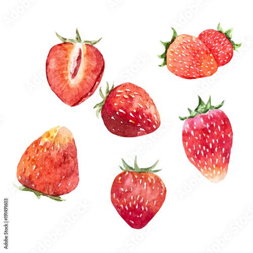 Fototapeta Watercolor strawberry vector set obraz