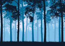 Vector Illustration Of A Coniferous Forest With Trees And Grass