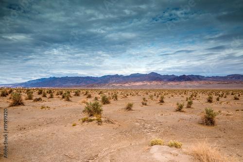 Papiers peints Saumon Death Valley