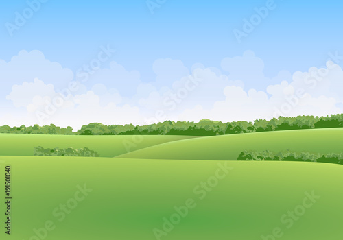 Poster Blauwe hemel Green summer vector landscape with meadows and trees in the background with clouds in blue sky