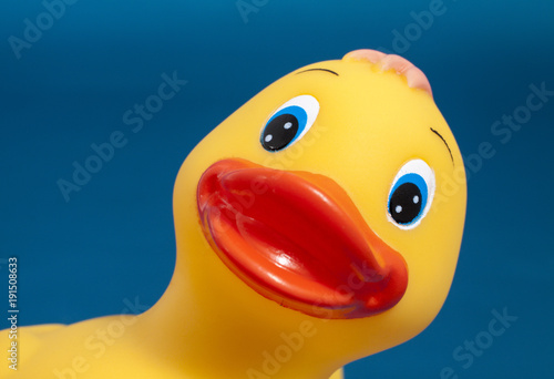 Close up of a yellow plastic duck isolated on a blue background Canvas Print