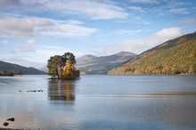 Isle Of Spar / Trees On The Isle Of Spar In Loch Tay, Scotland. 25 October 2017