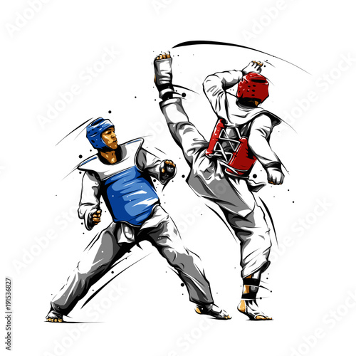 taekwondo action 3 Canvas Print