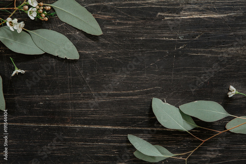 Canvas Prints Floral Fresh eucalyptus leaves with little white flowers in the corners of a vintage, black, wooden table