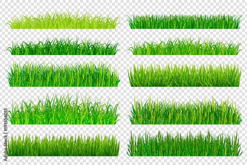 Fototapety, obrazy: Spring green grass borders isolated on transparent background. Vector illustration