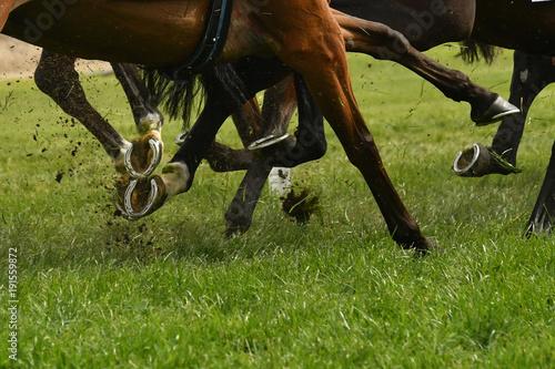 Fotografía Horse racing action