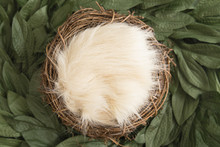 Green Wreath Digital Newborn Backdrop