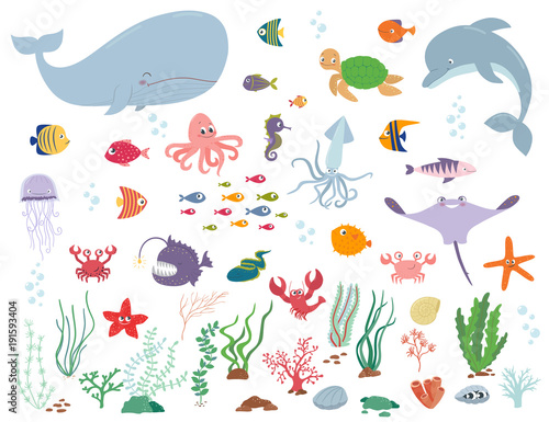Sea animals and water plants. Cartoon vector illustration Canvas Print