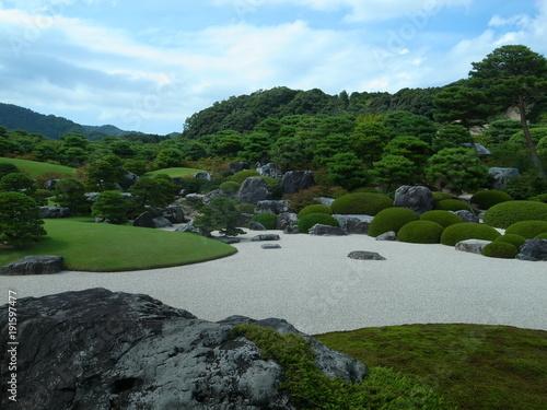 Foto auf Gartenposter Forest river Japanese garden