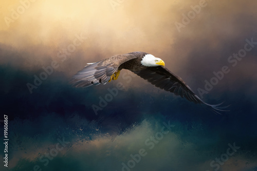 Fotografie, Tablou A glorious painted american bald eagle flying over the stormy sea