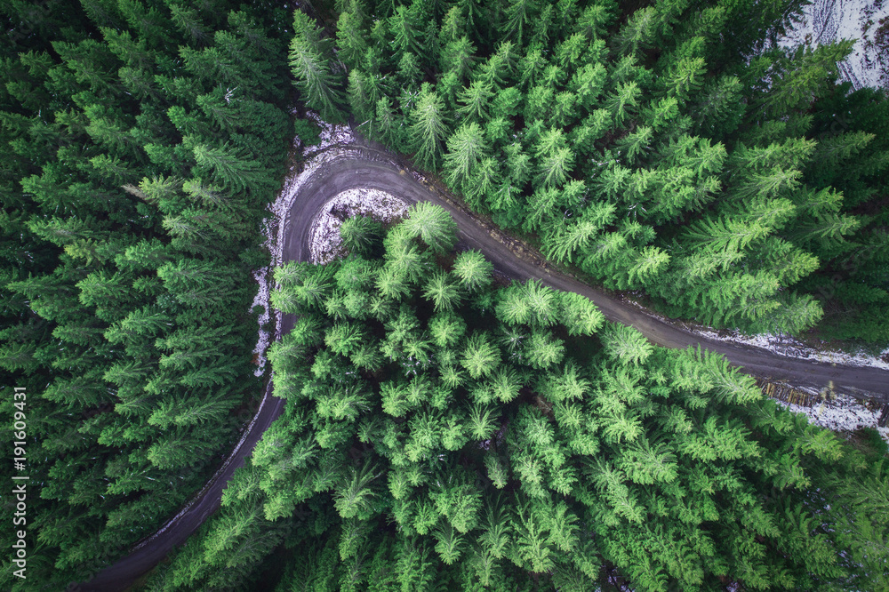 Fototapeta Empty road in a forest from a drone
