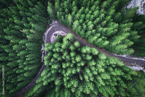 Foto auf AluDibond Olivgrun Empty road in a forest from a drone