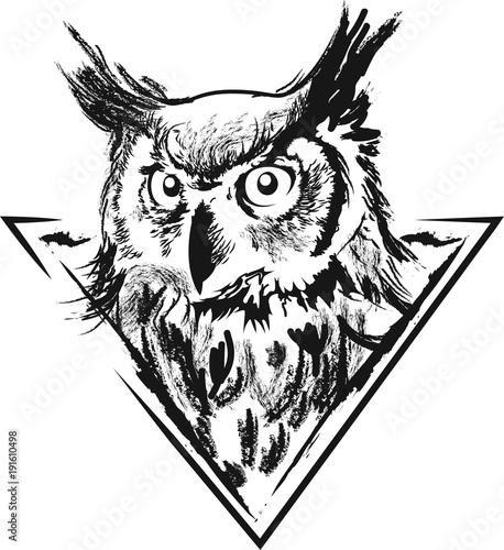 In de dag Uilen cartoon Owl in vector