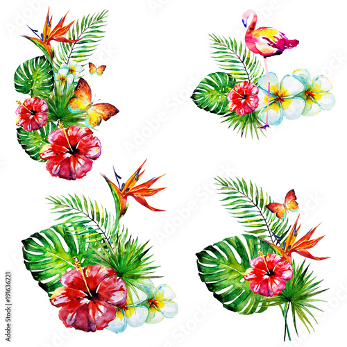 beautiful red flowers ,palm leaves,set, watercolor on a white