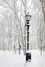 Street Lamp In The Park In Winter A Winter Landscape Beautiful