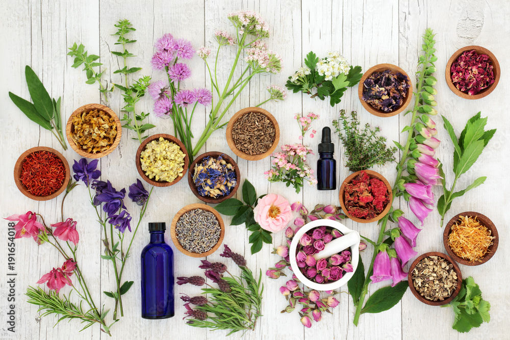 Fototapety, obrazy: Natural herbal medicine selection with herbs and flowers in wooden bowls and loose, glass aromatherapy essential oil bottles and mortar with pestle on rustic wood background. Top view.