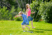 Adorable Little Girls Playing With A Sprinkler In A Backyard On Sunny Summer Day. Cute Children Having Fun With Water Outdoors.