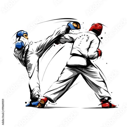 Obrazy Taekwondo   taekwondo-action-4
