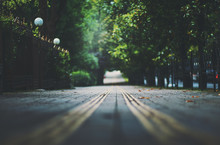Shallow Depth Of Field Photo S...