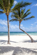 Beautiful sea view, two palmswhite sand, blue sky