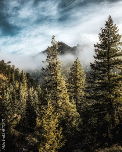 Photo Stands Gray traffic Misty Mountain