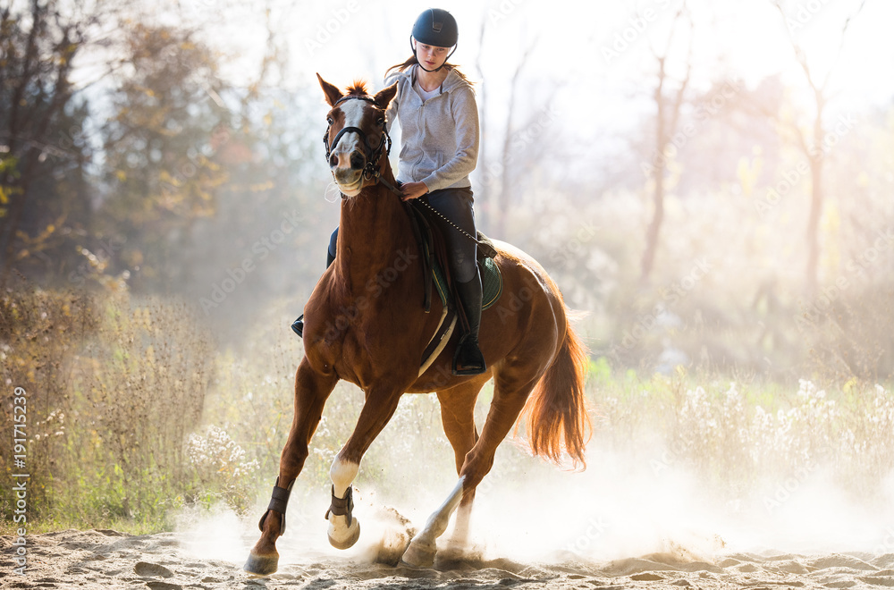 Fototapety, obrazy:  girl riding a horse
